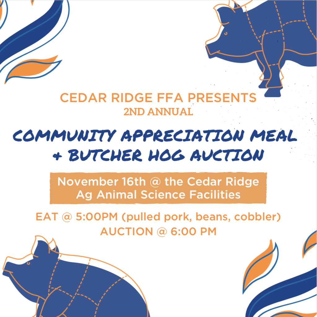 hog auction